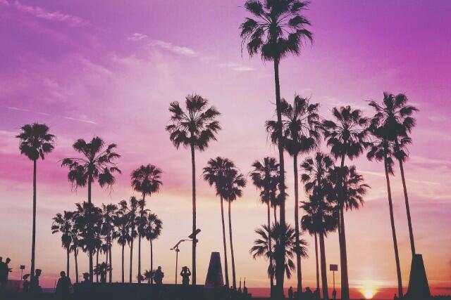【成田・羽田発】2019年10月~2020年3月出発ロサンゼルスツアー発売開始しました!