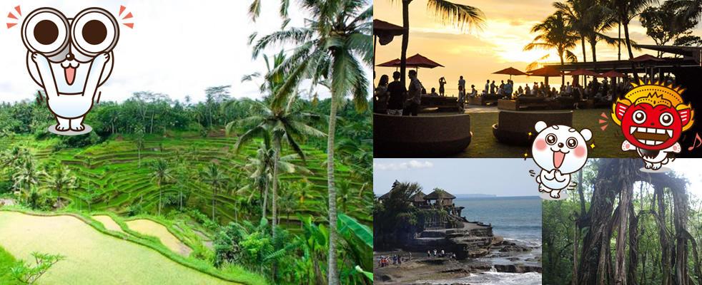 バリ島旅行ツウがおすすめする、バリ島の定番~穴場の観光スポット!
