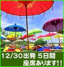 【羽田発】年越しをバリ島で!先着20名様限定プランです!