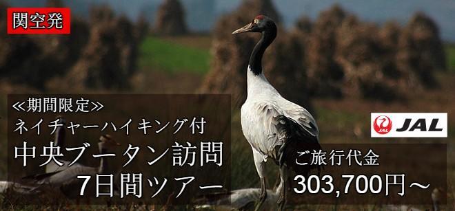 関空発・オグロヅル鑑賞ハイキング付き7日間