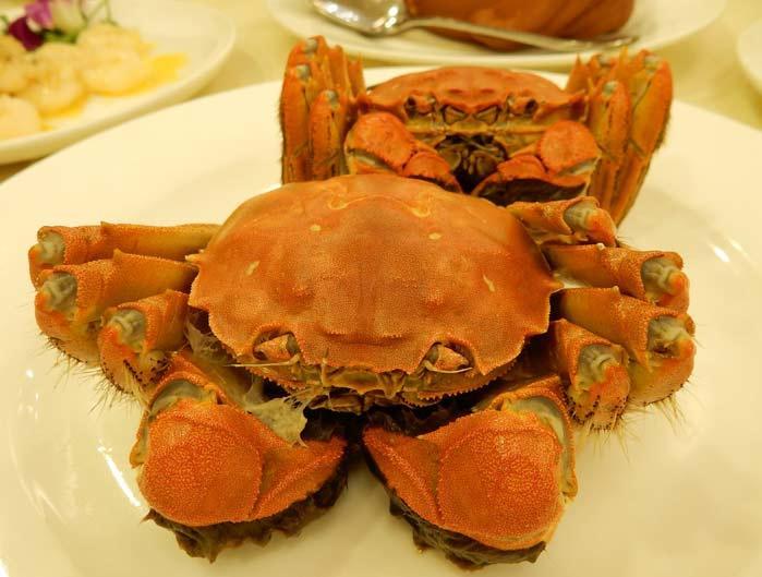 今が旬!本場上海に上海蟹(シャンハイガニ)を食べに行こう♪