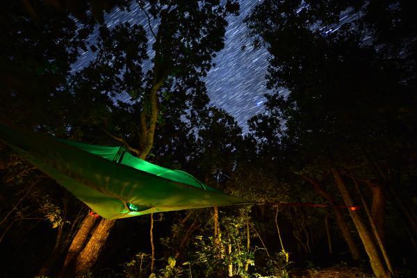 ジャングルのプラネタリウム『ジャングリウム』
