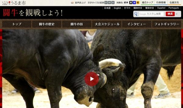 春の全島闘牛大会