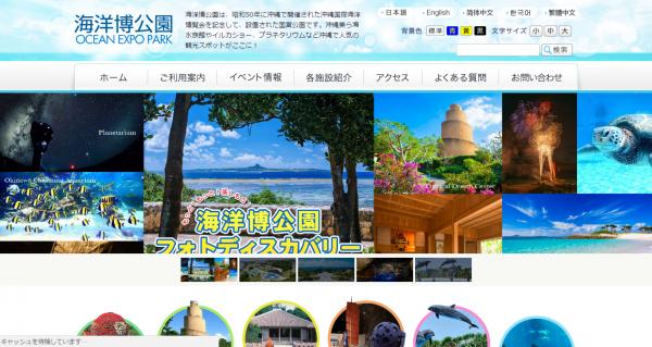 海洋博公園、デンドロビウムの特別展示を開催