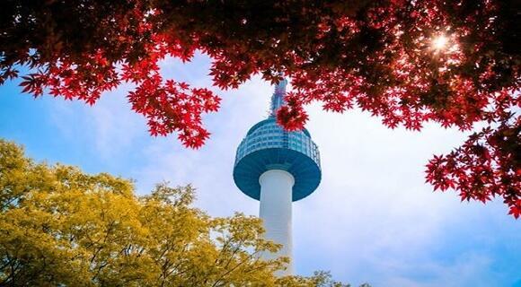 【4名1室プラン】\4~9月出発/LCCチェジュ航空で行く韓国・ソウル旅行!