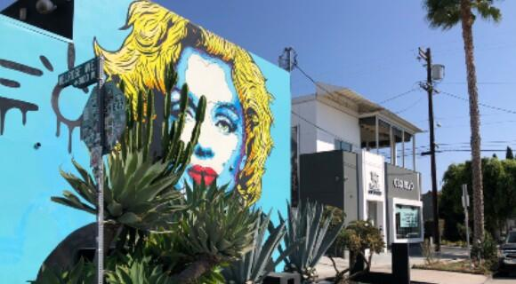 【ロサンゼルス】おすすめ♪JALプレエコ利用ツアー