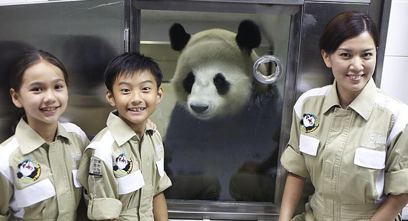 旅の思い出作りにピッタリ♪香港オーシャンパークで『パンダのエサやり体験』♪