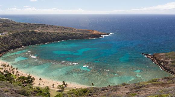 羽田1-3月発・ハワイアン航空直行便で行く!神秘の島<ハワイ島>