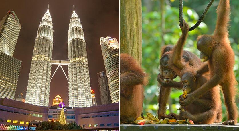 マレーシア航空で行くマレーシア【クアラルンプール&コタキナバル】2都市周遊ツアー!