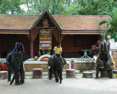 プーケット動物園3