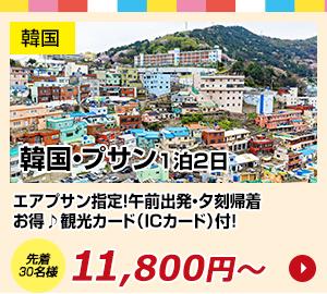 韓国初売り目玉商品