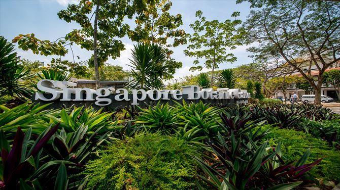 シンガポール旅行で立ち寄りたい二大植物園!ガーデンズ・バイ・ザ・ベイ&ボタニック・ガーデン