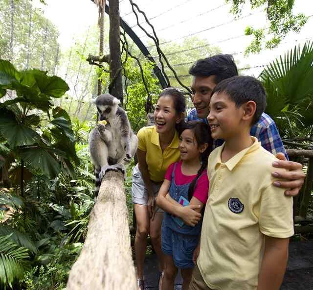 3大動物園特集