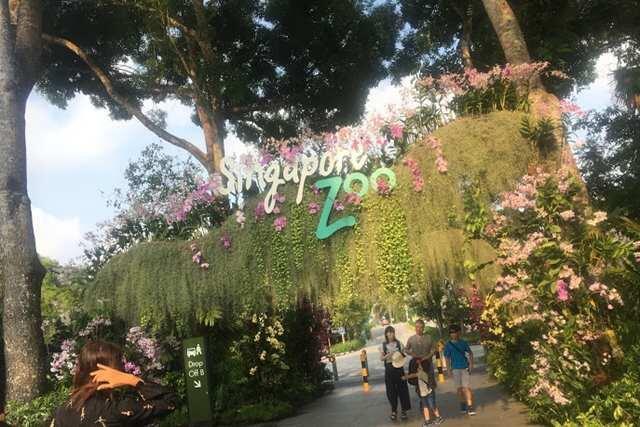 \家族旅行にオススメ!/シンガポールには観光地で大人気のスポット・3大動物園組み込みプランでご案内♪